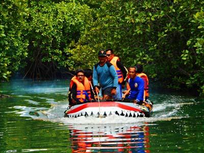 Menyusuri mangrove