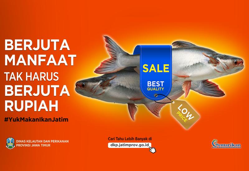 7 Manfaat Dan Keunggulan Ikan Patin Dinas Kelautan Dan Perikanan Provinsi Jawa Timur